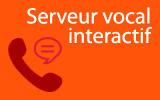 Serveur vocal interactif